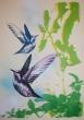 Hummingbirds Jim Starr