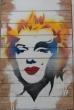Punk Marilyn Ed Stryker