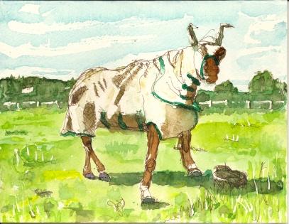 Panto Horse Andrew Watkins